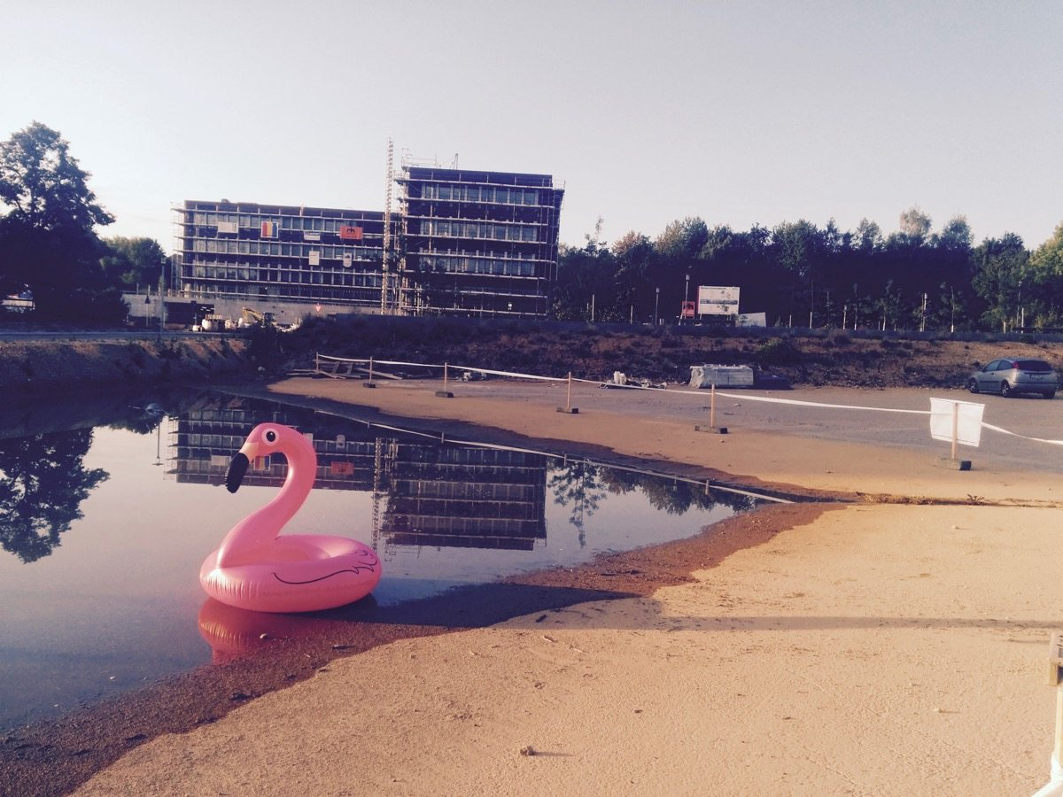 techbase-flamingo-3