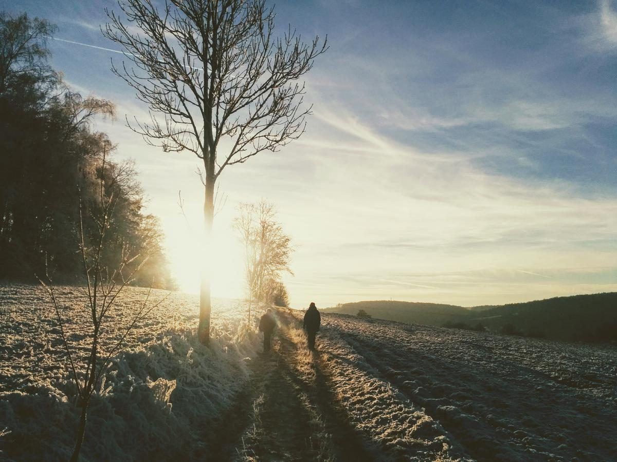 Tag 338/2016: Winterspaziergang